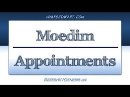 Moedim | Appointments